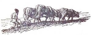 Ursitoarele de la Ganzova